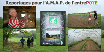 Reportages producteurs AB